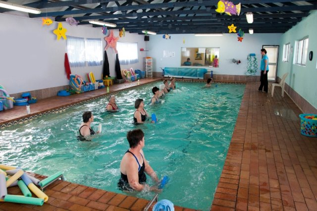 Dolphin Swim School - Gallery