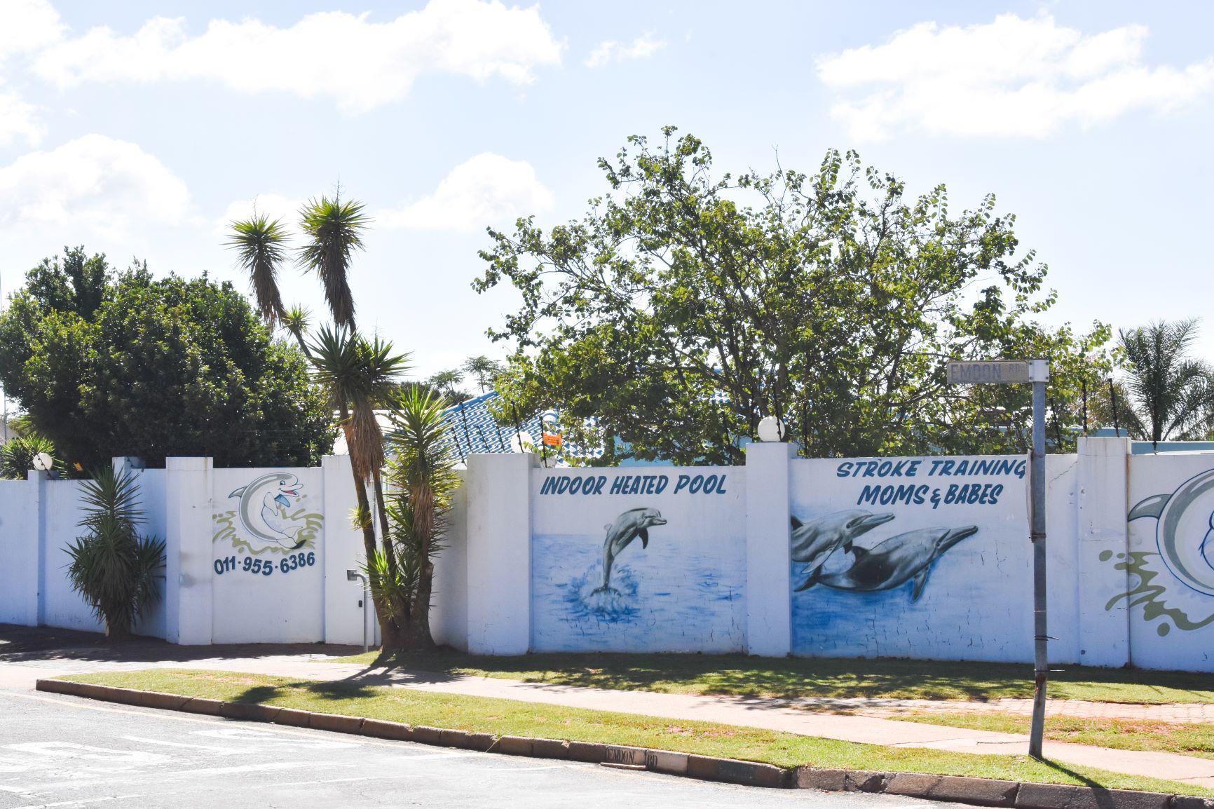Dolphin Swim School - Gallery